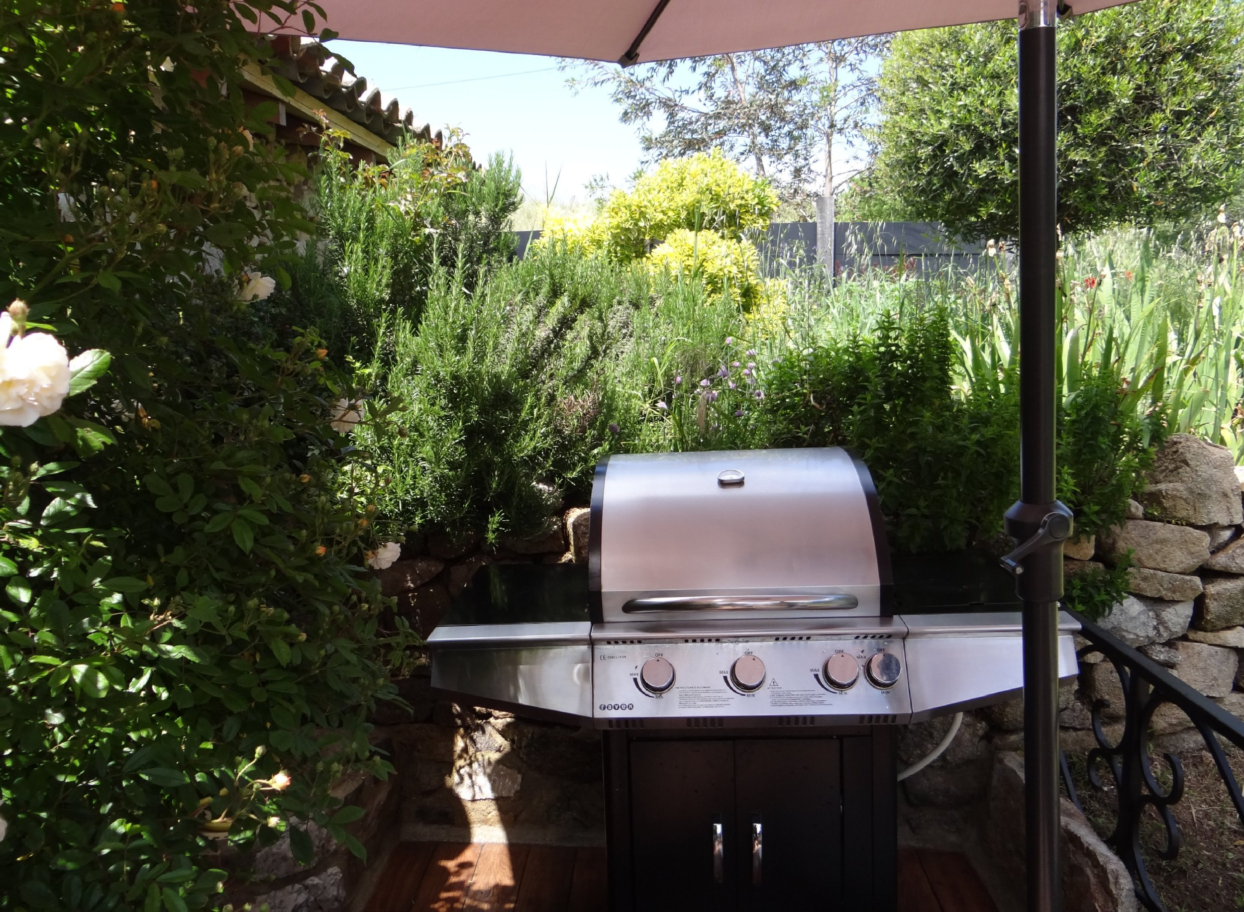 barbecue22-2500